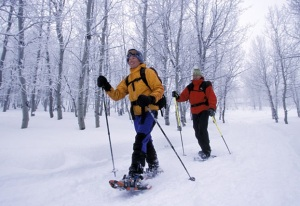snowshoeing-tips-4